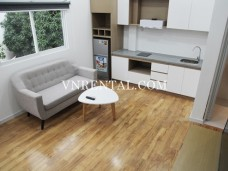 New refurbished house for rent in Tan Binh District, Ho Chi Minh City