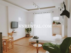 Cosy and nice decorated serviced apartment for rent in district 1, HCMC