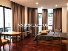 Cosy serviced apartment for rent in District 1, Ho Chi Minh City