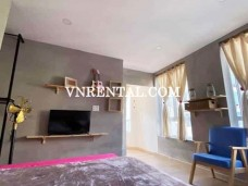 Spacious classic serviced apartment for rent in District 1, HCMC